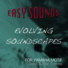 Evolving Soundscapes