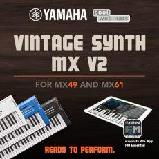 MX_VintageSynth_02